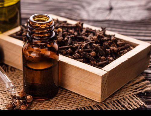 ¿Cuáles son los beneficios para la salud y los usos del aceite de clavo de olor?